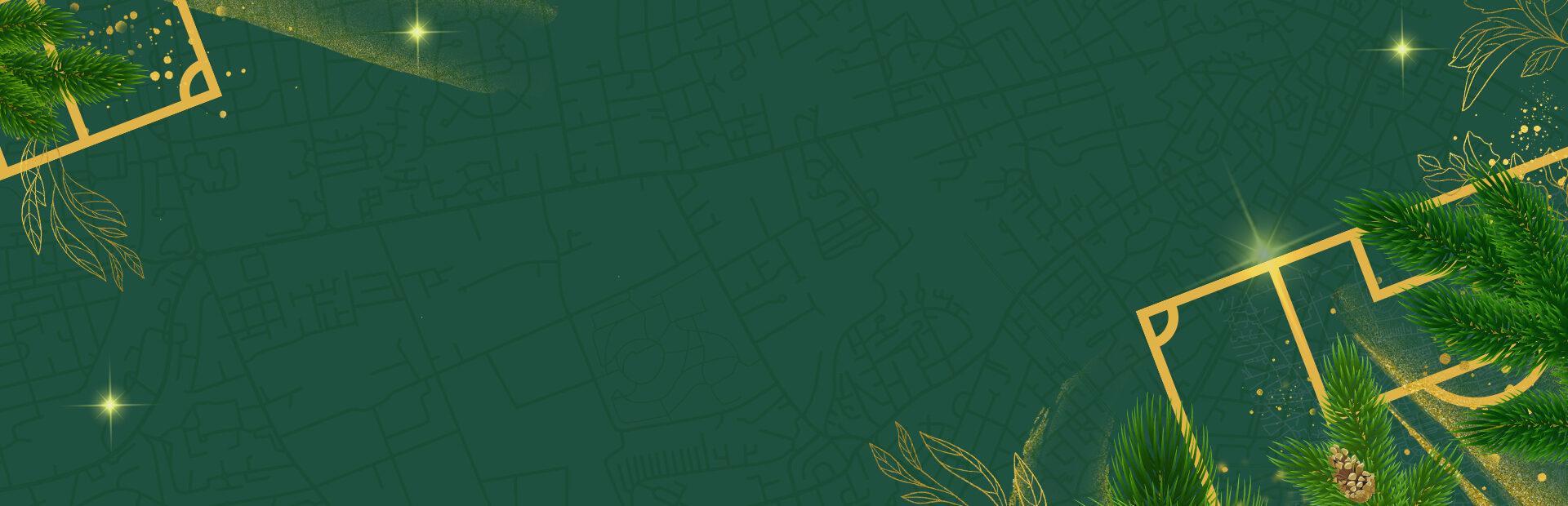 ARK2208 Hibernian Christmas Blank Web banner